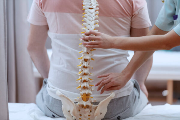 A physiotherapist demonstrating the structures around the lower back